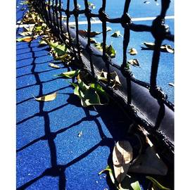 Tennis Net With Leaves