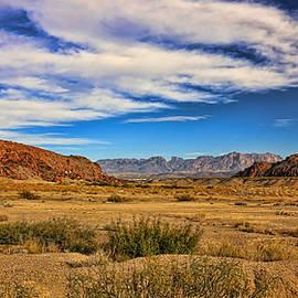Judy Vincent - Terlingua Desert 4