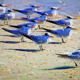 Terns On The Beach by Alice Gipson