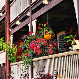 Terrace House with Flowers