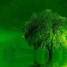 Terre verde by Valerie Anne Kelly