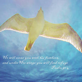 Under His Wings 3 by Susan Molnar
