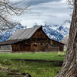 Teton Barn #1 by Scott Read