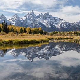 Teton Gold by Darlene Smith