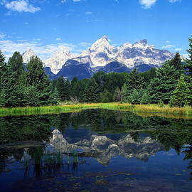 Teton Mountains Reflected by Sally Weigand