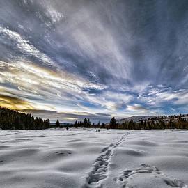 Teton Valley Sunset by Erika Fawcett
