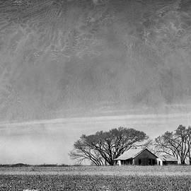 Mary Lee Dereske - Texas Cotton Farm