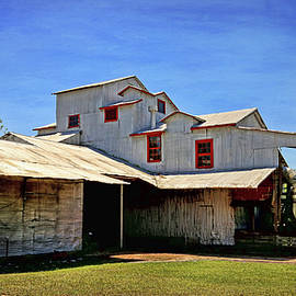 Texas Cotton Gin Museum by Judy Vincent