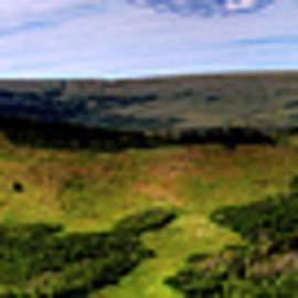 Roger Passman - Textured Landscape at Glacier National Park