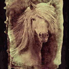 Textured Portrait of a Horse by Grace Iradian