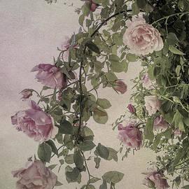 Elaine Teague - Textured Roses