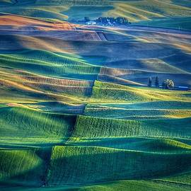 Lynn Hopwood - Textures of the Palouse