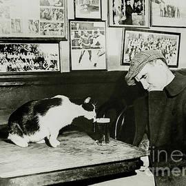 Jon Neidert - That Cat Drinking Beer