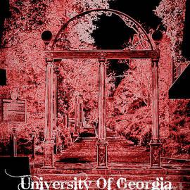 Reid Callaway - The Abstract Arch University Of Georgia U G A Art