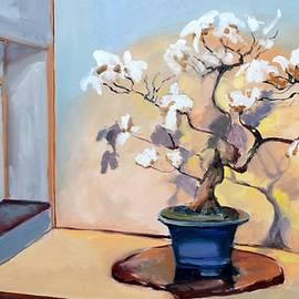 The Art of Bonsai - Bonsai Tree by Donna Tuten