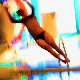 The Art Of Diving 1 by Jeff Breiman