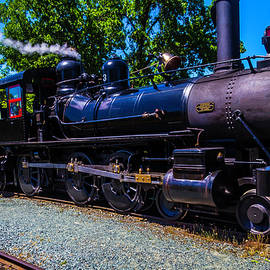 The Awesome Steam Train No 3 - Garry Gay