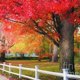 Anita Pollak - The Beauty of Autumn in New England