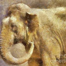 The Beauty of Elephants by Sarah Kirk - Sarah Kirk