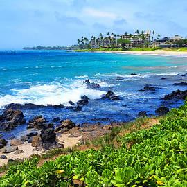 Michael Rucker - The Beauty of Maui