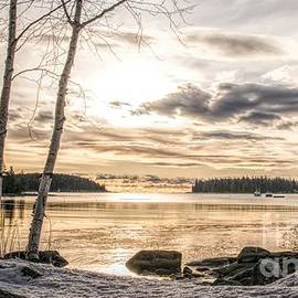 Jan Mulherin - The Beauty of the Maine Coast