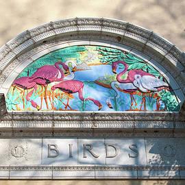 Steve Stuller - The Bird House