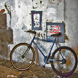The Blue Bicycle by Claudia O'Brien