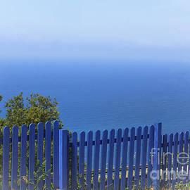 Olga Zamora - The Blue Fence