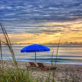 Debra and Dave Vanderlaan - The Blue Umbrella