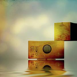 The Box by Bob Orsillo