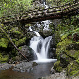 The bridge crossing Rodney Falls