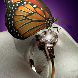 The Butterfly and the Engagement Ring by Yuri Lev