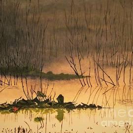 Olga Zavgorodnya - Calmness in the Swamp