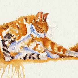 Debra Hall - The Cat-ortionist