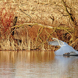 Debbie Oppermann - The Chase Is Over