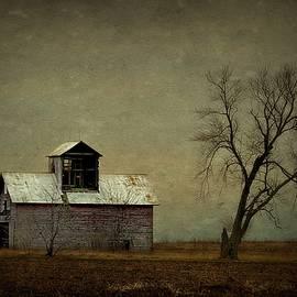 The Corn Crib by Toni Abdnour
