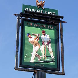 Richard Reeve - The Cricketers