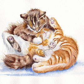 The Cuddly Kittens by Debra Hall