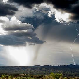 The Dark Rain Core by Cathy Franklin