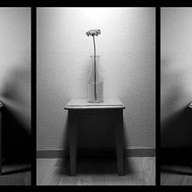 The Day Goes By - Dawn Til Dusk by Lauren Radke