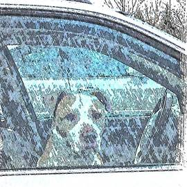The Dog in the Car - For Dawn by Lenore Senior