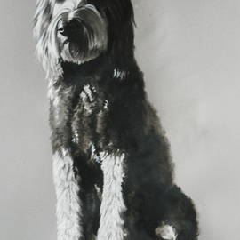 The Doodle by Barbara Keith