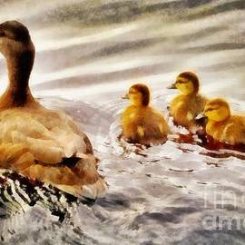 The Duck Family by John Springfield - John Springfield