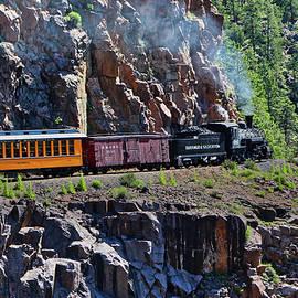 The Durango and Silverton Narrow Gauge Railroad by David Thompson
