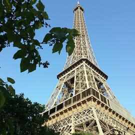 The Eiffel Tower by Mark J Dunn