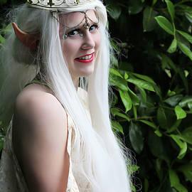 The Elven Queen by Jon Volden