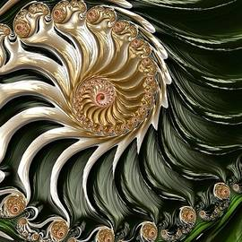 The Emerald Queen's Nautilus by Susan Maxwell Schmidt