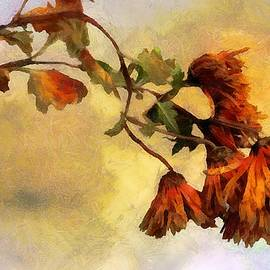 RC deWinter - The End of the Season