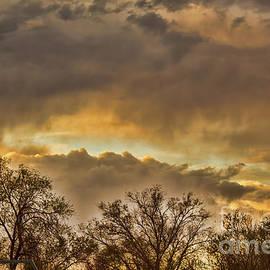 Steven Parker - The Evening Sky