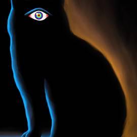 Salman Ravish - The Eye have it
